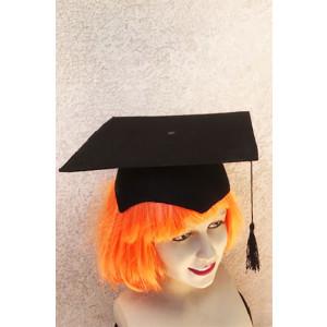 כובע עורך דין / שופט