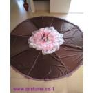 מצנח עוגה