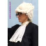 אביזרים לשופט