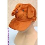 כובע קסקט כלב