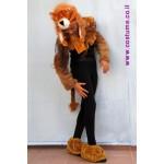 אריה-אביזרים לתחפושת