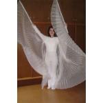 מלאך פליסה
