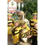 משפחת הדבורים