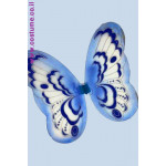 כנפיים גדולות לפרפר